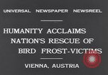 Image of swallows Vienna Austria, 1931, second 3 stock footage video 65675040738