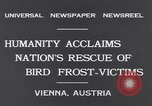 Image of swallows Vienna Austria, 1931, second 6 stock footage video 65675040738