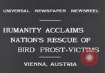 Image of swallows Vienna Austria, 1931, second 7 stock footage video 65675040738
