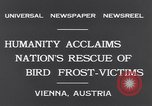 Image of swallows Vienna Austria, 1931, second 8 stock footage video 65675040738