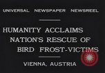 Image of swallows Vienna Austria, 1931, second 10 stock footage video 65675040738