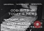 Image of Giant models of vegetables Hawthorne California, 1932, second 11 stock footage video 65675040751