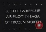 Image of Dog sled team rescues pilot United States USA, 1944, second 5 stock footage video 65675040790