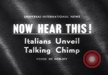 Image of chimpanzees Rome Italy, 1962, second 4 stock footage video 65675040906