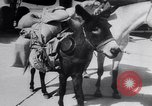 Image of Jet Air Show Abilene Texas USA, 1956, second 9 stock footage video 65675040954
