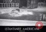 Image of Hippopotamus San Diego California USA, 1940, second 3 stock footage video 65675041000