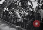 Image of Hippopotamus San Diego California USA, 1940, second 7 stock footage video 65675041000