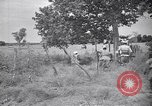 Image of Italian forces advancing during Sudan campaign in World War II Kurmuk Sudan, 1940, second 10 stock footage video 65675041003