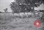 Image of Italian forces advancing during Sudan campaign in World War II Kurmuk Sudan, 1940, second 11 stock footage video 65675041003