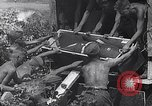 Image of Luftwaffe Eastern Front, 1941, second 12 stock footage video 65675041021