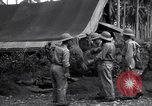Image of Flight Operations Guadalcanal Solomon Islands, 1943, second 5 stock footage video 65675041032