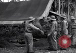 Image of Flight Operations Guadalcanal Solomon Islands, 1943, second 6 stock footage video 65675041032