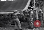Image of Flight Operations Guadalcanal Solomon Islands, 1943, second 7 stock footage video 65675041032