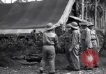 Image of Flight Operations Guadalcanal Solomon Islands, 1943, second 8 stock footage video 65675041032