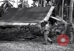 Image of Flight Operations Guadalcanal Solomon Islands, 1943, second 10 stock footage video 65675041032