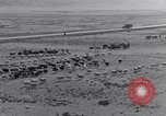 Image of Nomads Iran, 1944, second 11 stock footage video 65675041201