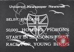Image of Pigeons Selby England, 1933, second 1 stock footage video 65675041255