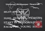 Image of Pigeons Selby England, 1933, second 3 stock footage video 65675041255