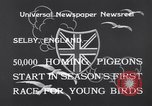 Image of Pigeons Selby England, 1933, second 9 stock footage video 65675041255