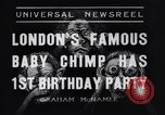 Image of Baby chimpanzee London England United Kingdom, 1936, second 1 stock footage video 65675041290