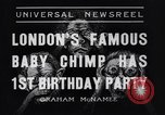 Image of Baby chimpanzee London England United Kingdom, 1936, second 2 stock footage video 65675041290