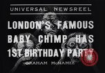 Image of Baby chimpanzee London England United Kingdom, 1936, second 3 stock footage video 65675041290