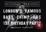 Image of Baby chimpanzee London England United Kingdom, 1936, second 4 stock footage video 65675041290