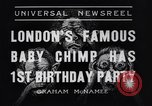 Image of Baby chimpanzee London England United Kingdom, 1936, second 8 stock footage video 65675041290
