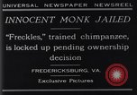 Image of trained chimpanzee Fredericksburg Virginia USA, 1929, second 8 stock footage video 65675041385