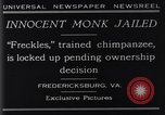 Image of trained chimpanzee Fredericksburg Virginia USA, 1929, second 12 stock footage video 65675041385