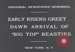 Image of Circus New York City USA, 1931, second 3 stock footage video 65675041396