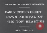 Image of Circus New York City USA, 1931, second 6 stock footage video 65675041396