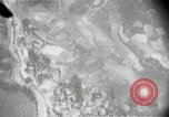 Image of pictures from US aircraft gun cameras Korea, 1950, second 8 stock footage video 65675041561