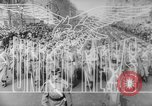 Image of Liberator bombers Pacific Theater, 1943, second 9 stock footage video 65675041589