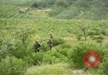 Image of United States Marines Naktong River Korea, 1950, second 9 stock footage video 65675041605