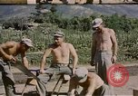 Image of United States Marines Naktong River Korea, 1950, second 5 stock footage video 65675041606