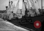 Image of Gdynia harbor Poland, 1959, second 11 stock footage video 65675041632