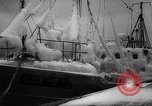 Image of Gdynia harbor Poland, 1959, second 12 stock footage video 65675041632