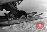 Image of Navion plane Canada, 1951, second 11 stock footage video 65675041668