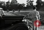 Image of Negro workers North Carolina United States USA, 1934, second 9 stock footage video 65675041858