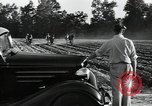 Image of Negro workers North Carolina United States USA, 1934, second 12 stock footage video 65675041858