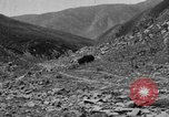 Image of yak battle Kumbum Tibet, 1930, second 10 stock footage video 65675041972