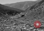Image of yak battle Kumbum Tibet, 1930, second 12 stock footage video 65675041972