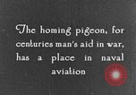 Image of carrier pigeon United States USA, 1925, second 8 stock footage video 65675042068