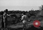 Image of Invasion of Aguni Jima Okinawa Ryukyu Islands, 1945, second 9 stock footage video 65675042091