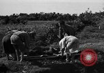 Image of Invasion of Aguni Jima Okinawa Ryukyu Islands, 1945, second 12 stock footage video 65675042091
