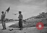 Image of Allied NE-1 aircraft Okinawa Ryukyu Islands, 1945, second 5 stock footage video 65675042093