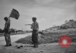 Image of Allied NE-1 aircraft Okinawa Ryukyu Islands, 1945, second 7 stock footage video 65675042093