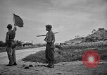 Image of Allied NE-1 aircraft Okinawa Ryukyu Islands, 1945, second 8 stock footage video 65675042093