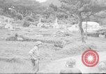 Image of US Military police guard Japanese on Iheya Jima Iheya Jima Japan, 1945, second 3 stock footage video 65675042119